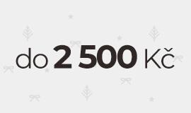 Tipy na hodinky do 2 500 Kč