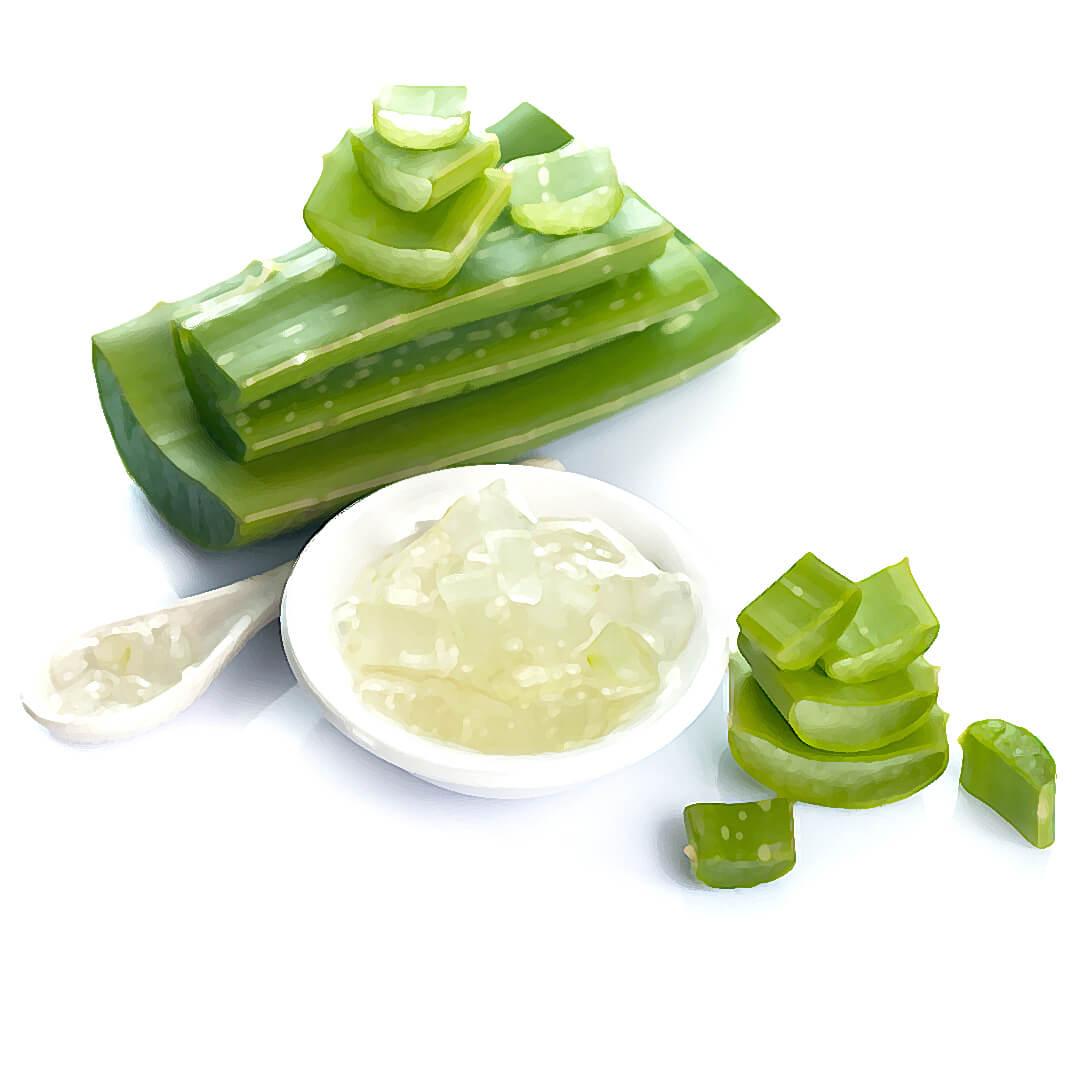 Obrázek Antibakteriální gel z aloe a levandule