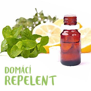 Recept Domácí repelent proti klíšťatům a hmyzu