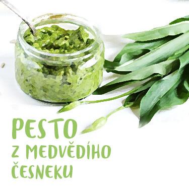 Recept Pesto z medvědího česneku