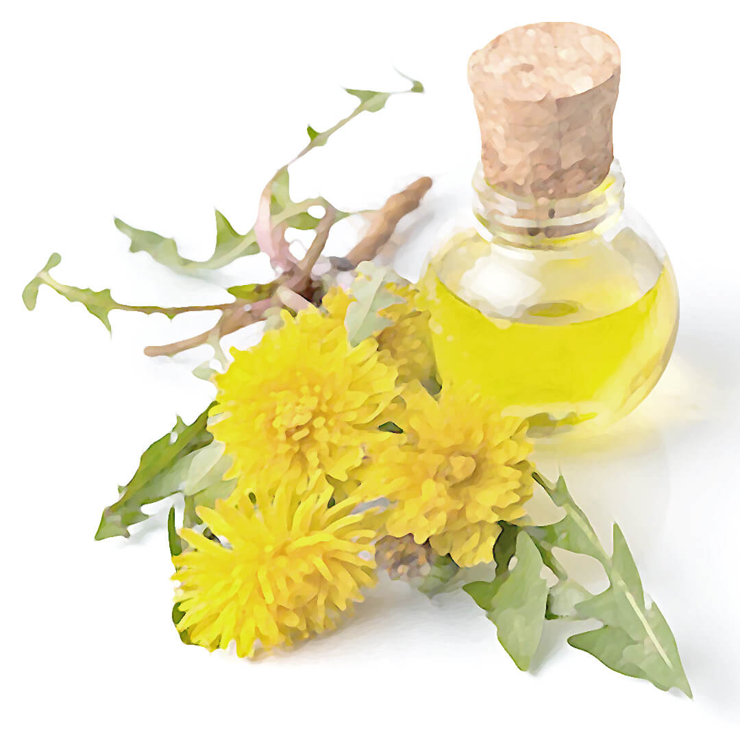 Obrázek Bylinkové mýdlo s levandulí