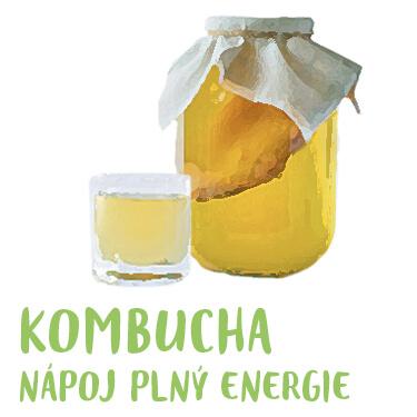 Recept kombucha