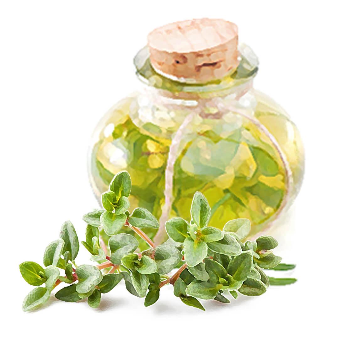 Tymianový olej pre boľavé kĺby