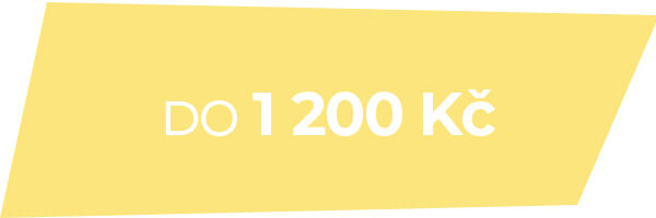 Dámské hodinky do 1 200 Kč