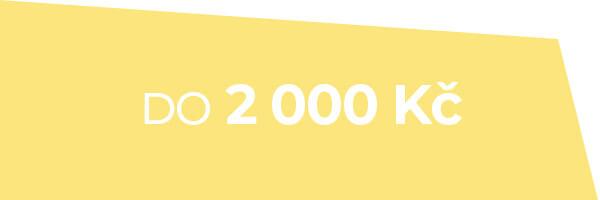 Dámské hodinky do 2 000 Kč