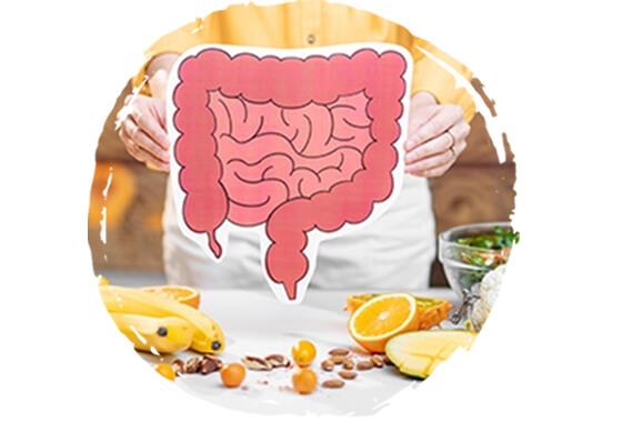 Detoxikační orgány