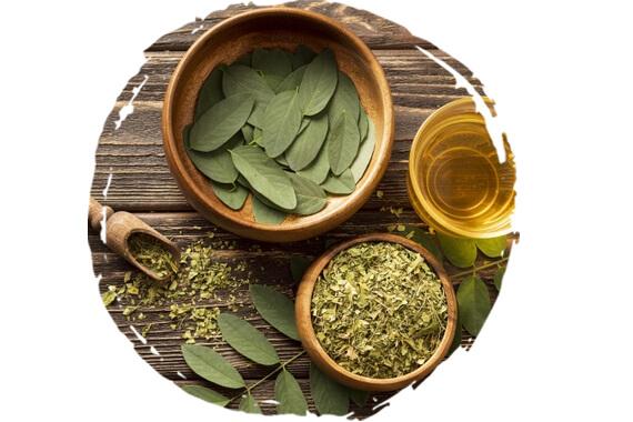 Detoxikačné bylinky