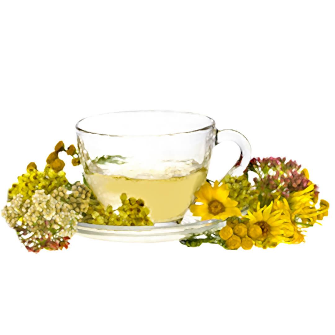 Bylinný čaj pro očistu jater
