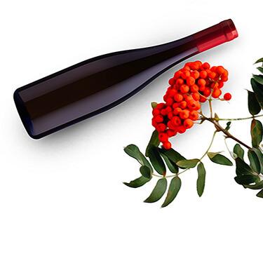 Obrázek Jeřabinové víno