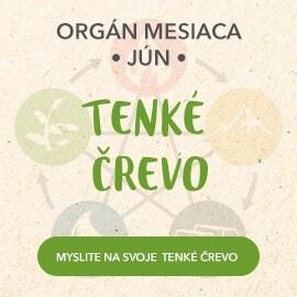 Organ mesiaca Jún - tenké črevo