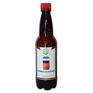 Zobrazit detail výrobku Salvia Paradise Kombucha násada 300 ml