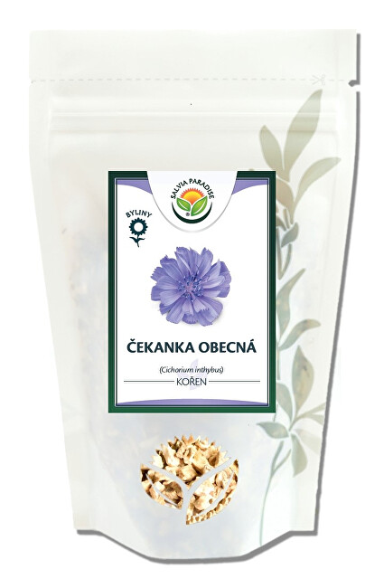 Zobrazit detail výrobku Salvia Paradise Čekanka kořen 100 g
