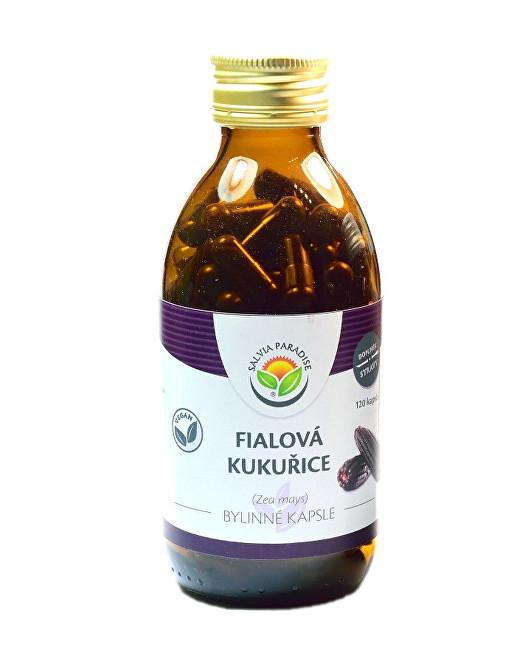 Zobrazit detail výrobku Salvia Paradise Fialová kukuřice - Maiz morado kapsle 120 ks