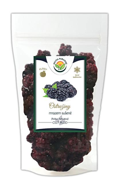 Zobrazit detail výrobku Salvia Paradise Ostružiny mrazem sušené 25 g