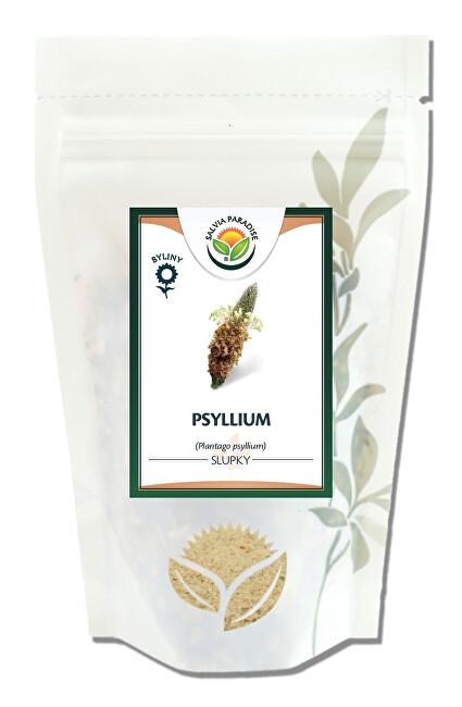 Zobrazit detail výrobku Salvia Paradise Psyllium slupky 100 g