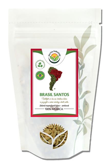 Zobrazit detail výrobku Salvia Paradise Káva - Brasil Santos zelená nepražená 1000 g