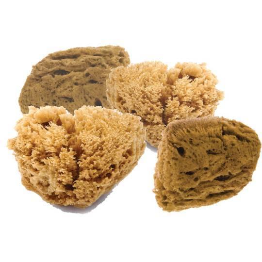 Zobrazit detail výrobku Natural Intimacy Mořská mycí houba na pleť 4M