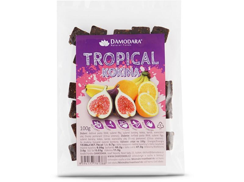 Zobrazit detail výrobku Damodara Ovocné kokina Tropical 100g
