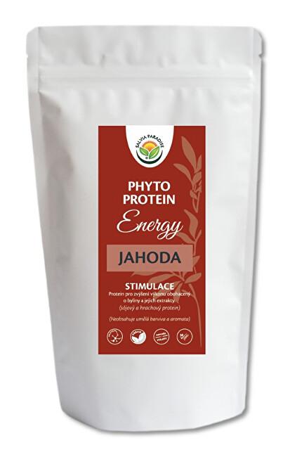 Zobrazit detail výrobku Salvia Paradise Phyto Protein Energy 300 g Jahoda