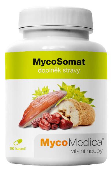 Zobrazit detail výrobku MycoMedica MycoSomat 90 kapslí