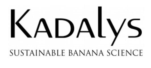 Kosmetika                                             Kadalys