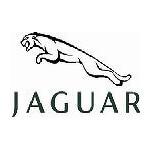 Parfémy                                             Jaguar