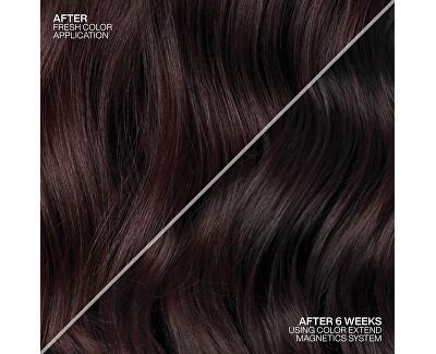 Šampon pro barvené vlasy Color Extend Magnetics (Shampoo Color Care)