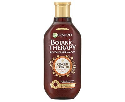 Revitalizačný šampón so zázvorom a medom pre mdlé a jemné vlasy Botanic Therapy (Revitalizing Shampoo)