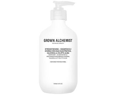Șampon întăritor Hydrolyzed Bao-Bab Protein, Calendula, Eclipta Alba (Strengthening Shampoo)