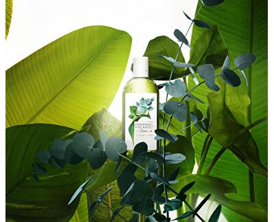 Sprchový gel Eukalyptus Powered by Plants Eucalyptus (Oil Body Wash) 250 ml