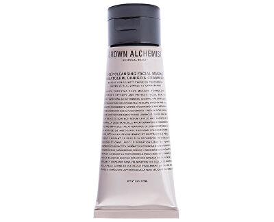 Mască de curățare profundă Wheatgerm, Ginkgo & Cranberry(Deep Cleansing Masque) 75 ml