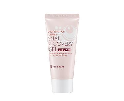 Pleťový gel s filtrátem hlemýždího sekretu 80% pro problematickou pleť (Snail Recovery Gel Cream) 45 ml