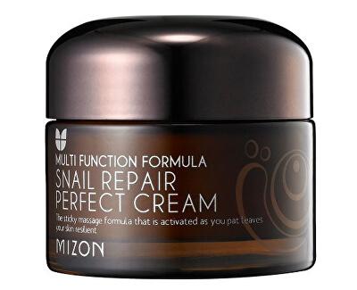 Pleťový krém s filtrátem hlemýždího sekretu 60% pro problematickou pleť (Snail Repair Perfect Cream) 50 ml