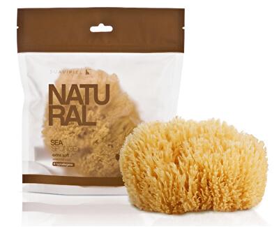 Mořská houba (Natural Sea Sponge)