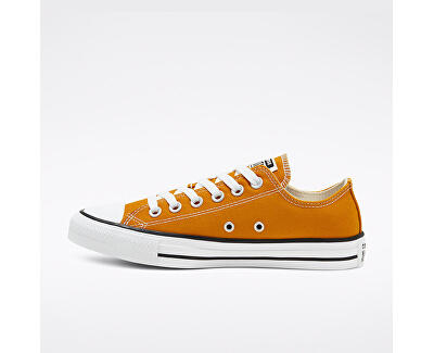Sneakers da donnaChuck Taylor All Star 168578C