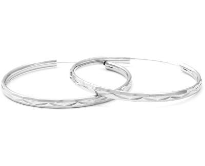 Úžasné stříbrné kruhové náušnice AGUC2103/50/N