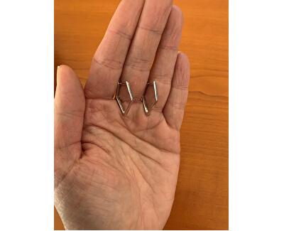 Orecchini minimalistici in argento SVLE0885XH20000