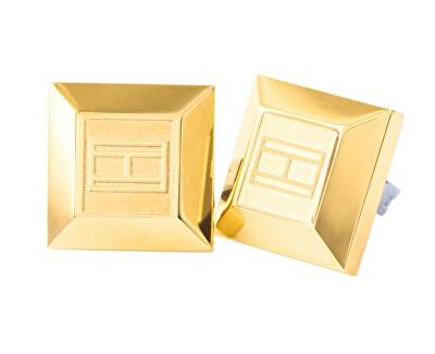 Cercei placați cu aur TH2700646