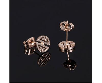 Cercei din bronz și oțel, model ornament