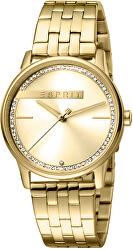 Rock Gold MB ES1L082M0045