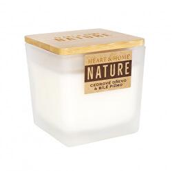 Sviečka veľká NATURE Cédrové drevo & biele pižmo 210 g