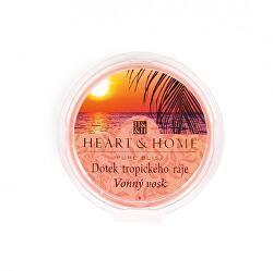 Vonný vosk Dotek tropického ráje 26 g