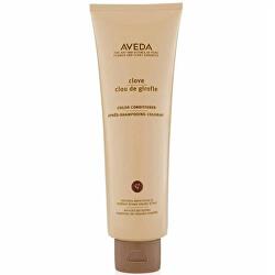 Tónující kondicionér pro tmavé vlasy Clove (Color Conditioner) 250 ml