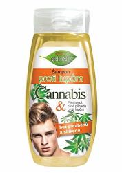 Šampon proti lupům Cannabis pro muže 260 ml