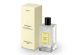 Bytový parfém ve spreji Raspberry and Black Vanilla (Spray) 100 ml