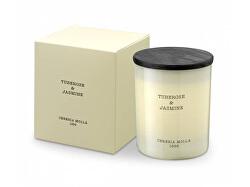 Krémes illatgyertya Tuberose & Jasmine (Candle) 230 g