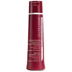 Sampon regenrant pentru părul slab si deteriorat (Reconstructing Replumping Shampoo) 250 ml