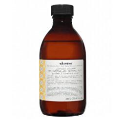 Šampon zvýrazňující zlaté a medové blond odstíny vlasů Alchemic (Golden Shampoo) 280 ml
