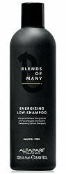 Energizující šampon proti vypadávání vlasů Blends of Many (Energizing Low Shampoo)