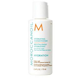 Hydratační kondicionér na vlasy s arganovým olejem (Hydrating Conditioner)